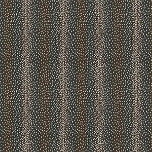 04743 - Antelope