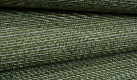 50299 W Salix - Leaf 12
