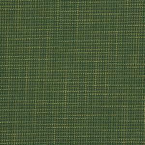 INVENTION - GRASS