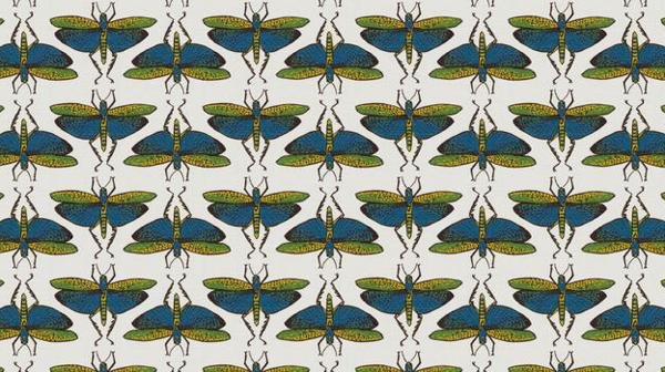 Fantasy Bug - Dragonfly
