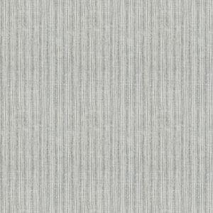 Market Stripe - Platinum-1